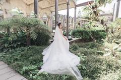 DSC08375 (Ted Foto) Tags: wedding realwedding sydneywedding love light brideandgroom