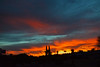 Good Evening Arizona (oybay©) Tags: arizona sunset monsoon cloudy clouds saguaro cactus silhouette color colors nature natural orange yellow red purple outdoor sky dusk cloud city tree