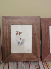 Clyde Puppy Paintings - In Frames, Dec 2018 (ianulimac) Tags: clyde puppy painting drawing reuse frame mahogany wood pictureframe watercolor paint sennelier paper recreation dog beloved pet squeakball toy little labrador pittbull reclaimedwood reuseaction gift treatface nosyface wallhanging cowspot australia kissingspot pitty pointer retriever gone carpentry carpentershop southamericanmahogany buffalo ny ianmacdonald crookedpinkiesart painter artist draw sketch doodle artwork