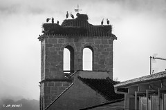 2018_11_30-3 (jrgenet) Tags: iglesia church manzanareselreal blancoynegro blackandwhite blackwhite monocromático comunidaddemadrid spain españa cigüeñas stork