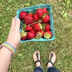 Fun was Had. www.jessica365.com (Jessica Brookes-Parkhill) Tags: strawberrypicking jessica365 fun fromwhereistand pride funwashad levantmaine mybirkenstock birkenstocks treworgyorchards feet shoes sandals birks