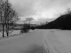 Alte Landstrasse mit Schnee (shortscale) Tags: schwarzweiss blackandwhite noiretblanc monochrome schnee landstrasse schwäbischealb