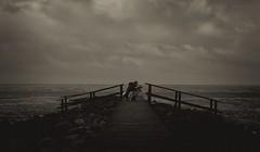 Tu, was du liebst und liebe dein Tun (gabrieleskwar) Tags: schwarzweiss schatten wolken himmel wasser meer brücke holz hund mann fotograf steg steine