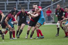 RGC_Vs_Cardiff_National_Cup__15-27-26 (johnrobjones) Tags: cardiff colwynbay cup cymru eirias game gogs rgc rugby sport wales zipworld match park rfc stadiwm union