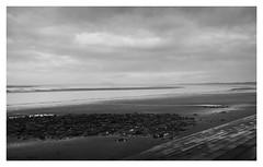 bos-misty-morning_panorama-b+w-190119 (Peadingle) Tags: wet morning beach burnhamonsea somerset