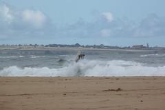 Surfers 4 (jtbradford) Tags: kauai hawaii