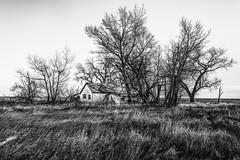 Scenic, South Dakota (paccode) Tags: solemn d850 landscape greatplains bushes brush blackwhite quiet shed wreck home abandoned barn monochrome grass shack house farm tree scary forgotten southdakota serious creepy scenic unitedstates us