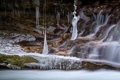 plant becomes ice (husiphoto) Tags: wasser water pflanze plant eis ice bach creek winter fels rock nature natur kalt cold outside landschaft landscape nikon d750 nikkor