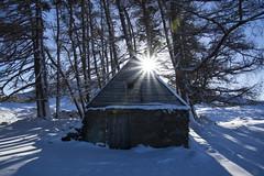 Sunlight Shines Through (steve_whitmarsh) Tags: aberdeenshire scotland scottishhighlands highlands mountain winter snow trees forest sun starburst glen topic cairngorms abigfave