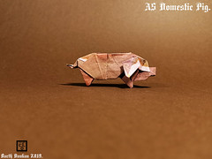 A5 Domestic Pig - Barth Dunkan (Magic Fingaz) Tags: barthdunkan origami cochon pig origamipig porc maiale 猪 svinja cerdo सूअर babi 豚 beraz varken porco свинья свиња หมู domuz schweinbonneannée2019paperfoldinghappynewyear2019craftmfpppliagedepapier