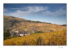 Ribeauvillé (Rémi Marchand) Tags: vigne vignoble vignoblealsacien alsace automne ribeauvillé hautrhin grandest église village villagealsacien canon5dmarkiii france eglisesaintgrégoire