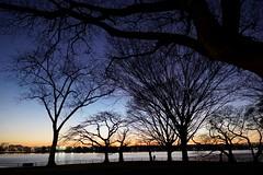 別離人對奈何天............. (LaTur) Tags: dc urban city dcist washingtondc river sunset