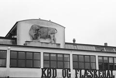 meat hall (Petri Juhana) Tags: sky building architecture praktica zeiss jena analog bw monochrome travel tourism classic bull meat city urban