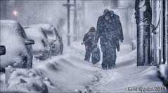 A cozy day in Norway (knut.uppstad01) Tags: snow badweather blizzard cold