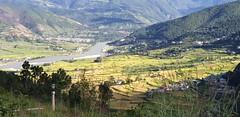 Valley view from Sangchhen Dorji Lhuendrup nunnery (.John Wong) Tags: valley punaka bhutan valleyview