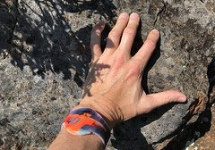 #MtTamalpais #Hike (Σταύρος) Tags: vernadunshee lefthand mywatch 40 mounttamalpais madbum myhand hike hiking marin californië california cali cal californie top mounttampalis mttamalpais sunnyday beautifulday marincounty millvalley mountain kalifornien kalifornia καλιφόρνια カリフォルニア州 캘리포니아 주 northerncalifornia カリフォルニア 加州 калифорния แคลิฟอร์เนีย norcal كاليفورنيا