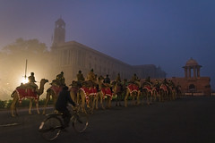 South Block (Ashmalikphotography) Tags: paraderehearsals bluehour camels soldier aamaadmi thepalace ashishshoots ashmalikphotography northblock raisinahills rajpath