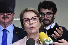 Entrevistas Diversas (Senado Federal) Tags: entrevista ministraterezacristina brasília df brasil bra