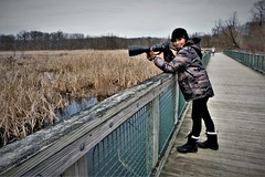 Debbie (prsavagec) Tags: photography photographer camera lakeside outdoors nature naturephotography woman people march spring trees reeds dock pier boardwalk water