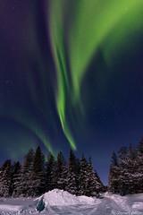 Z19_0261 LT (Zoran Babich) Tags: winter snow lapland lappi finland suomi northernlights auroraborealis