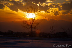 March 4, 2019 - A stunning sunset in Thornton. (Jessica Fey)