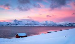 January light in Troms (Reidar Trekkvold) Tags: atlantic fujifilm kvæfjord landscape natur nature nordnorge norge norway sea seascape seaside sjø troms vinter winter