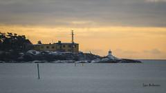 DSC05485 (fotolasse) Tags: sonyfåglarkarlshamnstenforsnatur karlshamn sony a7r ii natur nature hav see ship långexponering sweden sverige nyacanon5dmark3