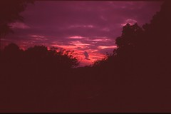 (✞bens▲n) Tags: leica m4 velvia iso50 rokkor 40mm f2 film analogue slide positive reversal sky sunset evening cloud red
