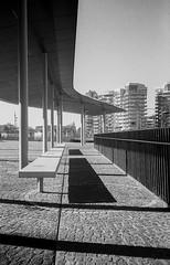 C04_F80_20190204_016_JPEG 2000 (Domenico Cichetti) Tags: milano citylife olympus olympusxa studional fomapan100 monocrome bw blackwhite blackandwhite bn argentique selfdevelope architecture