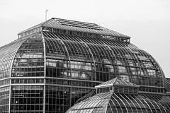 U.S. Botanic Garden Conservatory (Mondmann) Tags: usbotanicgardenconservatory usbotanicgarden botanicgarden washingtondc usa unitedstates america architecture building blackandwhite bw monochrome mondmann fujifilmxt20 conservatory