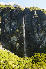 20190207-23-Waterfall from Rob Roy Glacier Track (Roger T Wong) Tags: 2019 nz newzealand rogertwong sel24105g sony24105 sonya7iii sonyalpha7iii sonyfe24105mmf4goss sonyilce7m3 southisland westmatukitukivalley bushwalk hike landscape outdoors tramp trek walk waterfall