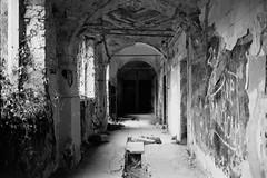 ** (Koprek) Tags: fuji gw690ii film 6x9 croatia castle opeka arboretum fomapan 100 january 2019