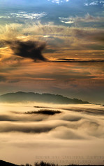 Thick Morning Fog, Sonoma Mountain (Vern Krutein) Tags: california usa earlymorningfogoverthevalley northerncalifornia trees tranquilly geoform bucolic petaluma clouds morning landscape