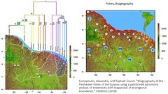 Lemopoulos and Covain 2018 - Biogeography of the freshwater fishes of the Guianas (Atlas of Amazonian Evolution) Tags: amazonia biodiversity evolution freshwater fishes biogeography phylogeny endemics guyana suriname frenchguiana rivers biology nature neotropics science