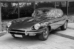 Jaguar E-Type (Miguel Angel Prieto Ciudad) Tags: jaguar etype sportcar car coche classic classiccar auto automobile automotive alpha3000 mirrorless motor blancoynegro blackandwhite bnw sonyalpha speed roadster coupe british england elegant luxury
