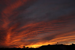Sunset 3 5 19 #20 (Az Skies Photography) Tags: sun set sunset dusk twilight nightfall sky skyline skyscape rio rico arizona az riorico rioricoaz arizonasky arizonaskyline arizonaskyscape arizonasunset cloud clouds red orange yellow gold golden salmon black march 5 2019 march52019 3519 352019 canon eos 80d canoneos80d eos80d canon80d