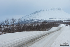 Kilpisjärvi, Finland (kevin-palmer) Tags: kilpisjärvi finland finnishlapland arctic europe winter march snow snowy cold cloudy overcast nikond750 tamron2470mmf28 enontekiö birchtrees forest road icy highway e8 saana scandinavianmountains