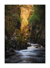 The Fairy Glen (Rich Walker Photography) Tags: gorge river snowdonia wales water rivers fairyglen glen landscape landscapes landscapephotography canon longexposure longexposures longexposurephotography efs1585mmisusm eos eos80d woodland woods waterfalls waterfall