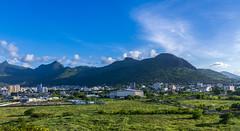 Port Louis / Порт Луи (dmilokt) Tags: природа nature пейзаж landscape гора лес небо облако пальма дерево mountain forest sky cloud palm tree dmilokt