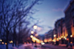 Half light (Mister Blur) Tags: winter lhiver invierno bare trees flicker blurry blur lights bokeh desenfoque vieux montreal nikon d7100 nikkor lens 35mm f18 half light craig armstrong
