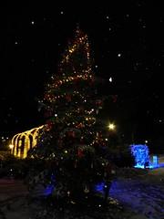 Christmas tree in Bazilescu Park, Bucharest (cod_gabriel) Tags: bucuresti bucurești bucharest bucarest bucareste bukarest boekarest romania roumanie românia bazilescu parc park parculbazilescu bazilescupark winter iarna iarnă night noapte snow zapada zăpadă ninsoare