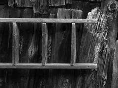 Echelle horizontale (Jacques Isner) Tags: savoie lepraz olympus em5mkii jacquesisner