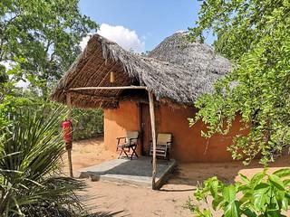 Africa Safari Selous Bungalow