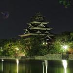 Jellyfish Flare Attacking Hiroshima Castle thumbnail