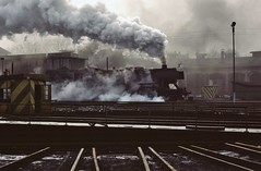 Nysa PKP  |  1985 (keithwilde152) Tags: ty2 ty2297 nysa silesia pkp poland 1985 depot town buildings architecture tracks railway steam locomotives outdoor winter