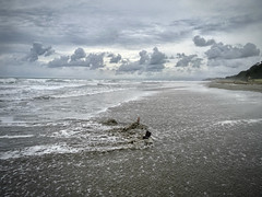 Getting Lost (LilaCheck ) Tags: alone lost lonely minimal sad solitude ocean coastal coast oceanpacific ohiwaa newzealand oceania outside sadmood