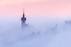A9901759_s (AndiP66) Tags: menzberg nebel fog winter january januar luzern lucerne schweiz switzerland sony alpha sonyalpha 99markii 99ii 99m2 a99ii ilca99m2 slta99ii tamron tamronspaf70300mmf456diusd tamron70300mm 70300mm f456 amount andreaspeters