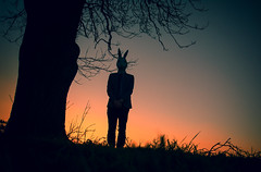 Warren (iratebadger) Tags: nikon nikond7100 d7100 mask rabbit silhouette standing standingalone sky shadows sunset colours tree branches outside countryside jacket ears orange blue evening eastridings iratebadger