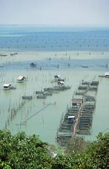 Fishing village, Ko Yo (near Songkhla) (Niall Corbet) Tags: thailand songkhla fishingvillage koyo fishing village nets