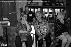 2019 Bosuil-Het publiek bij Steady State en The Animals 4-ZW